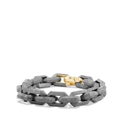 Meteorite Link Bracelet with accent of 18K Gold