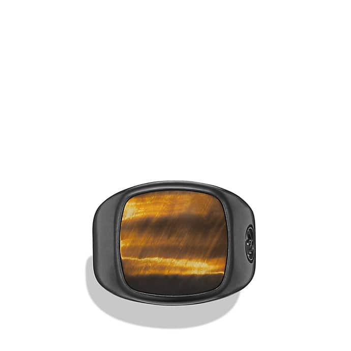 Exotic Stone Ring with Tiger's Eye in Black Titanium