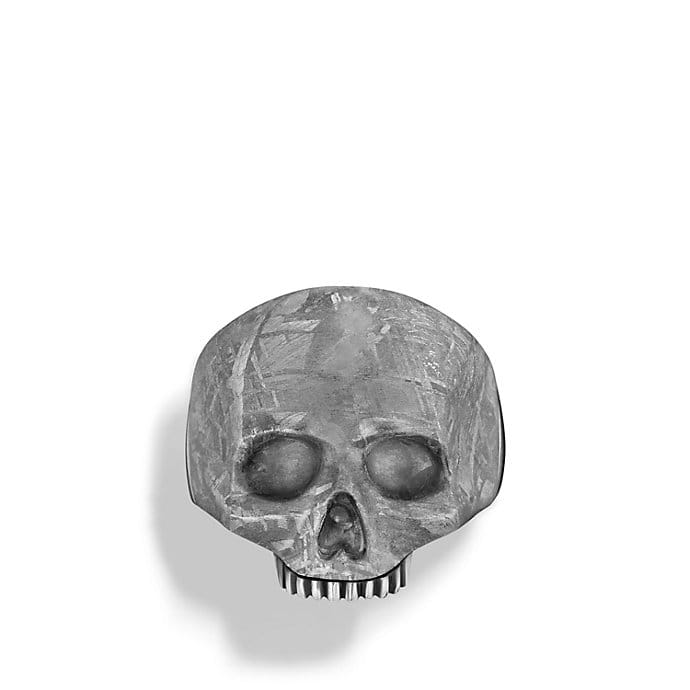 Skull Ring with Carved Meteorite