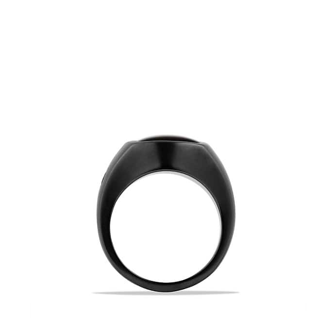 Exotic Stone Pinky Ring with Black Onyx in Black Titanium