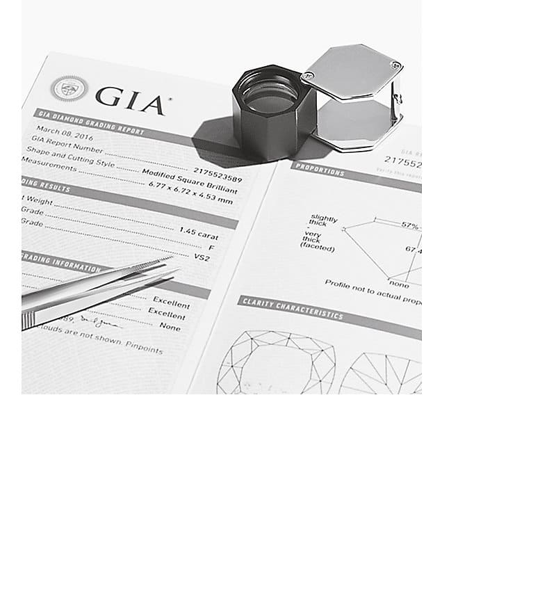A GIA assessment form