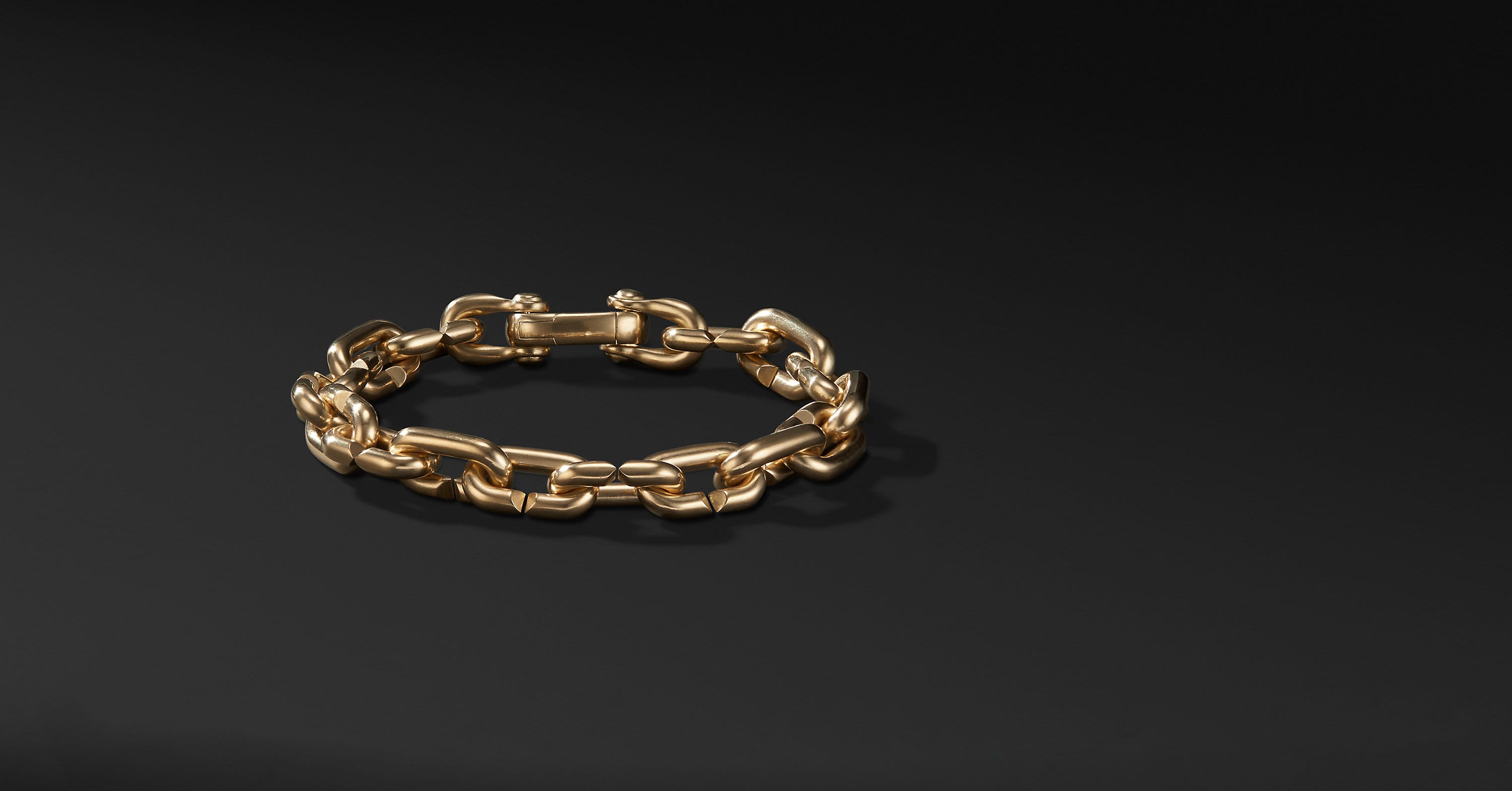 Chain Link Bold Bracelet in 18K Gold