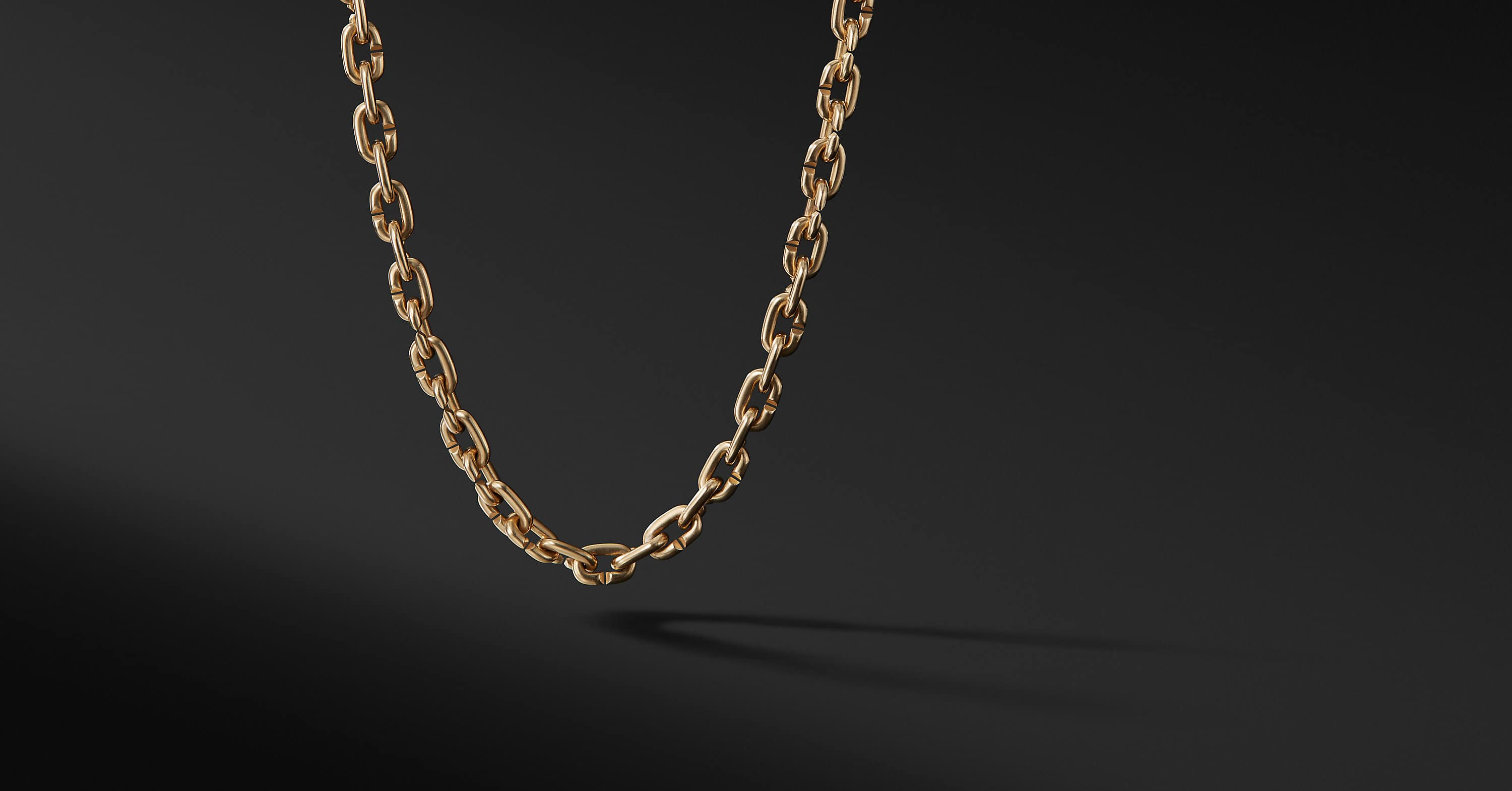 Chain Link Narrow Necklace in 18K Gold