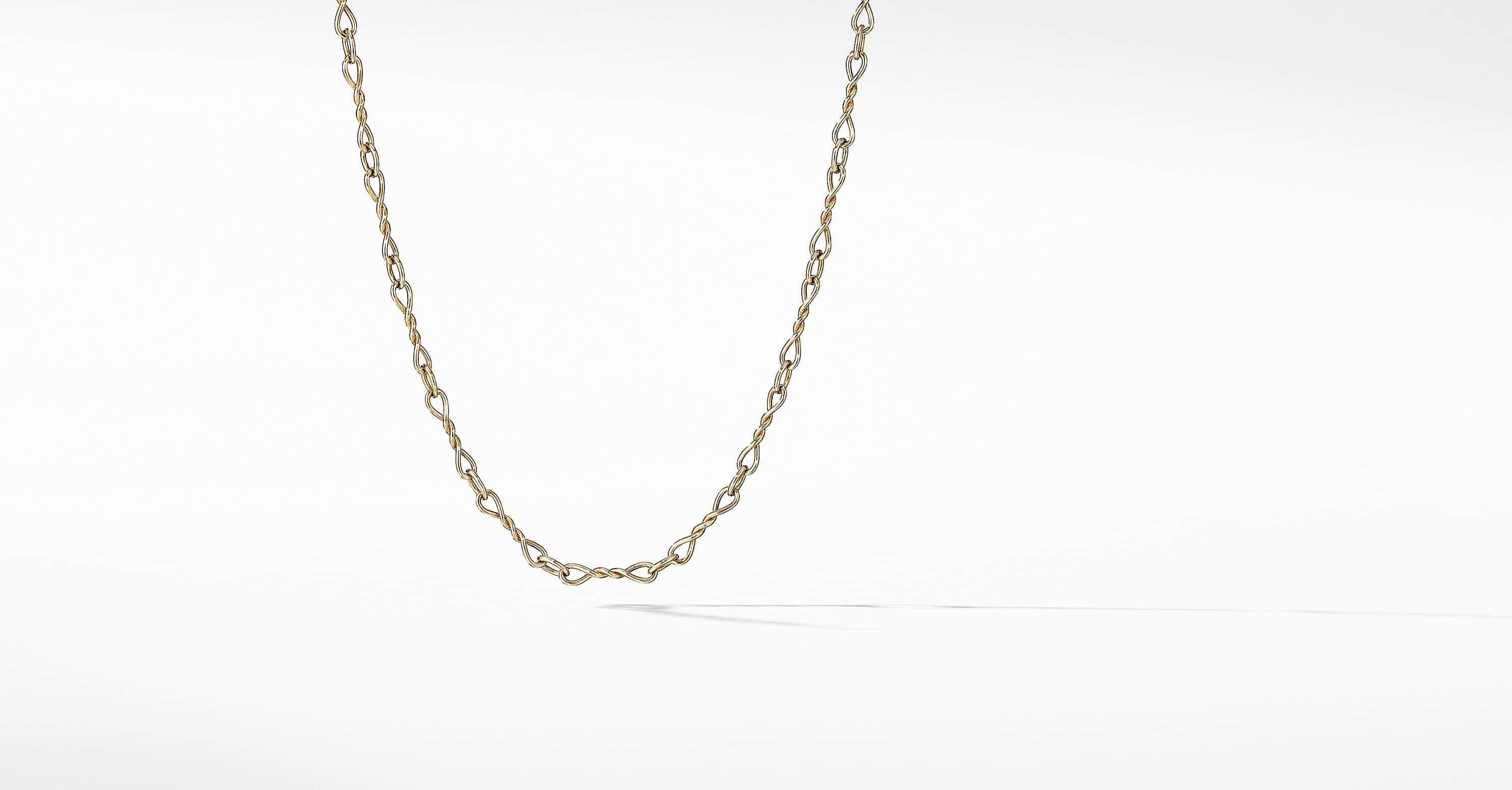 Continuance Small Chain Necklace in 18K Gold
