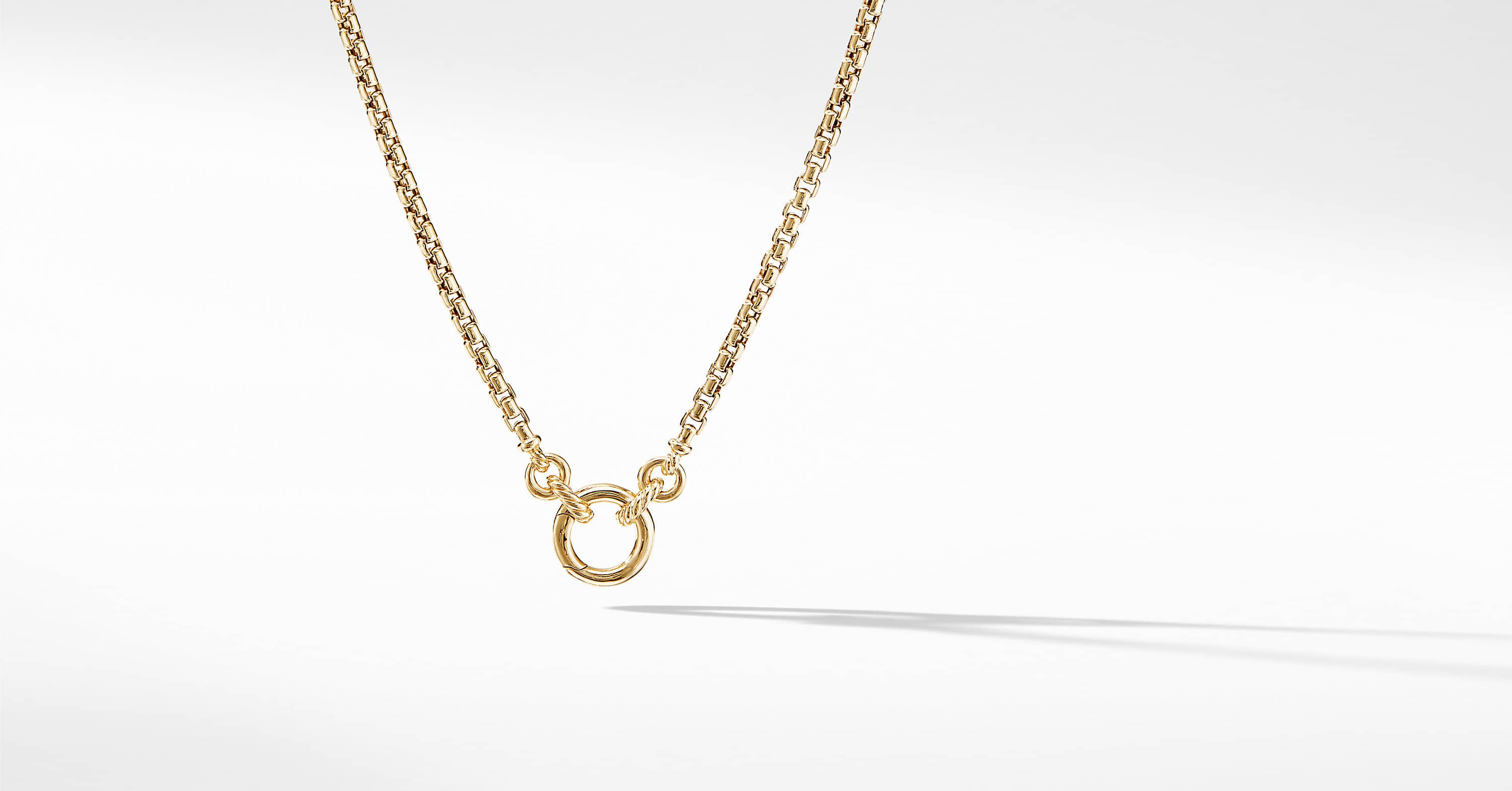 Amulet Vehicle Box Chain Necklace in 18K Yellow Gold