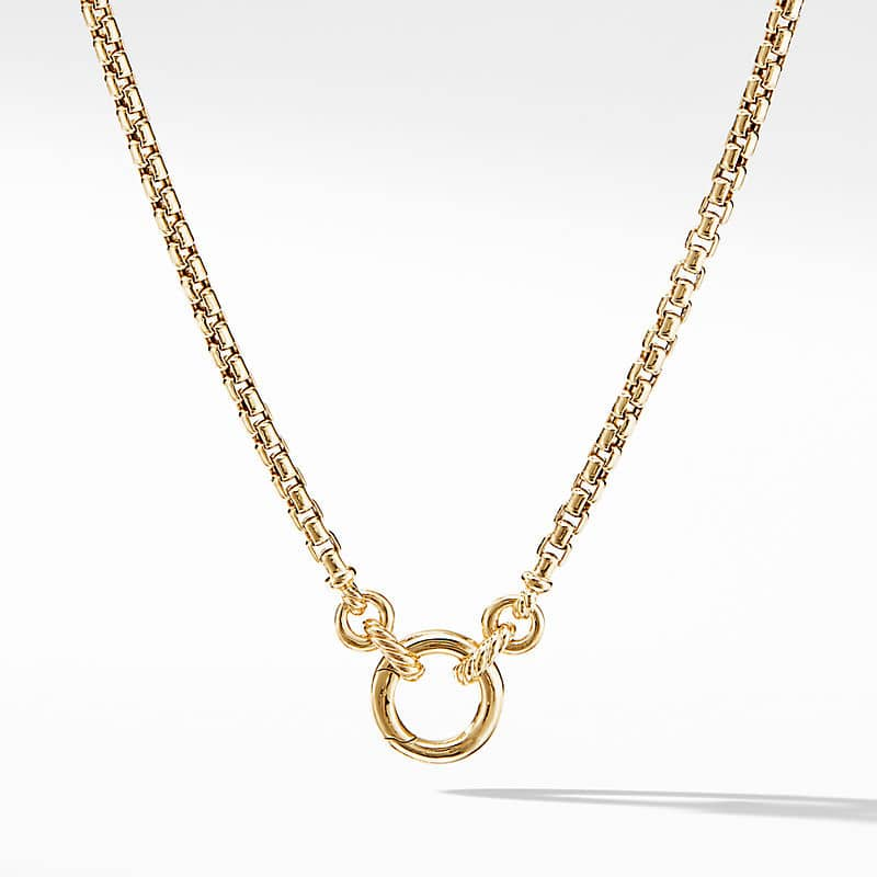 Smooth Amulet Vehicle Box Chain Necklace in 18K Yellow Gold