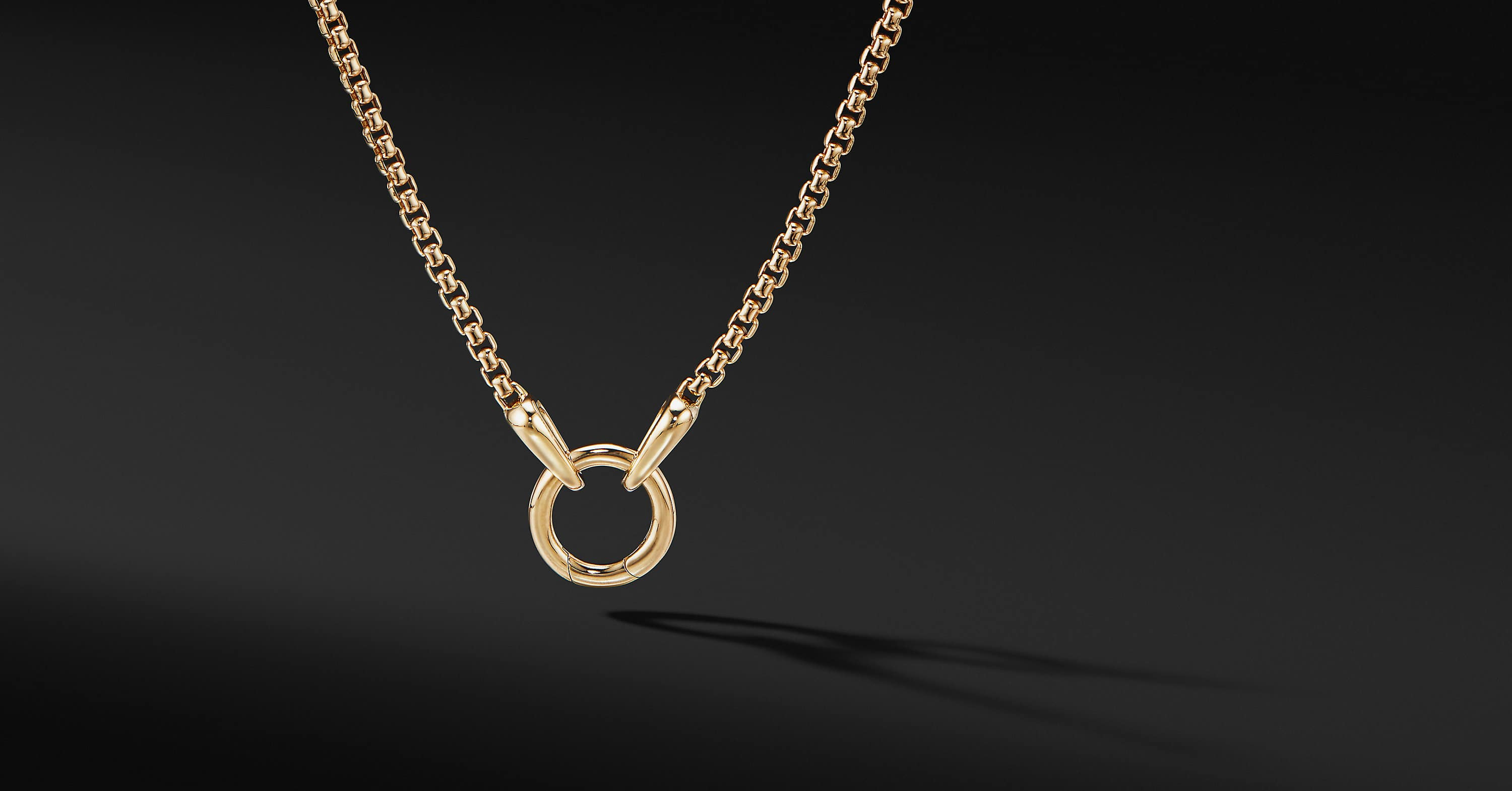 Charm Necklace in 18K Yellow Gold