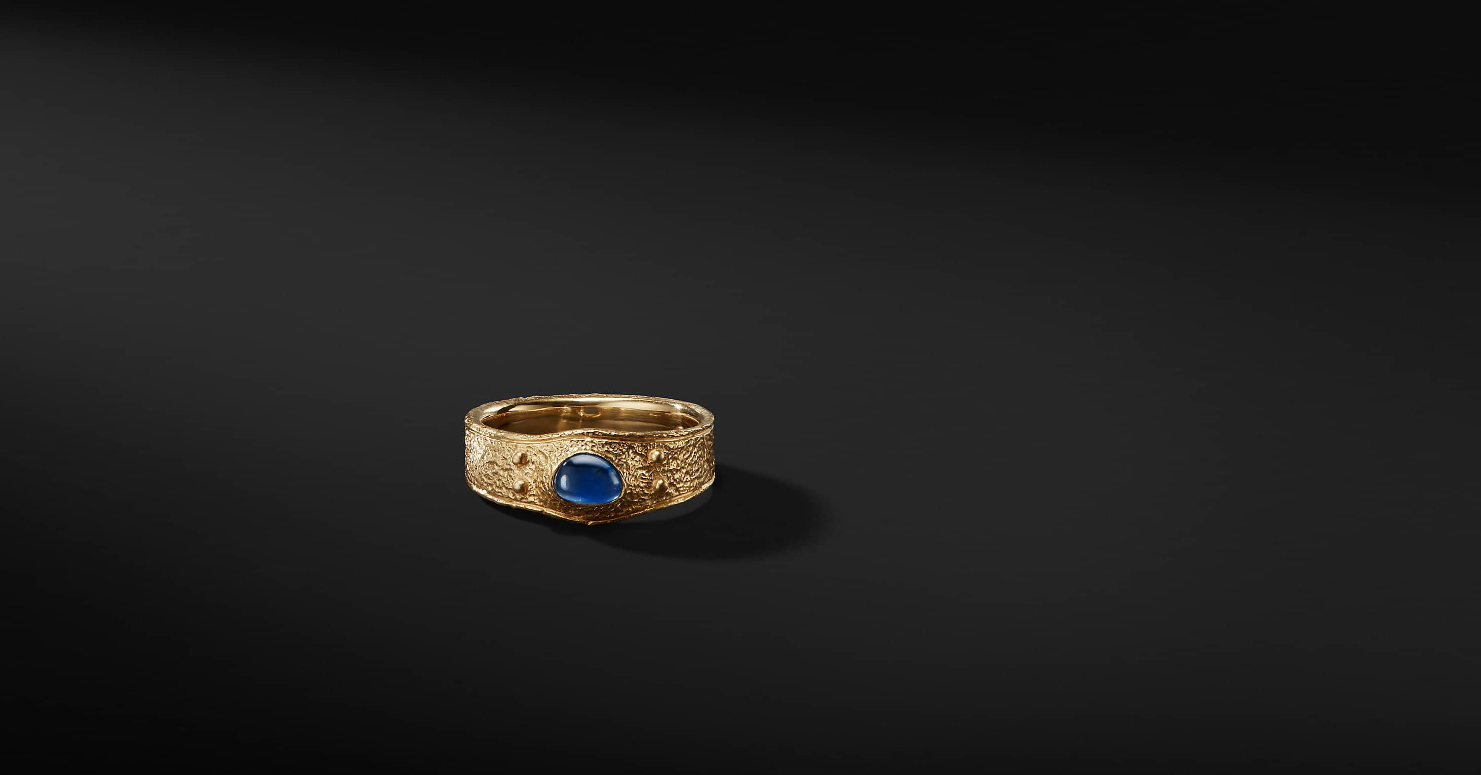 Shipwreck Single Stone Band Ring in 22K Gold