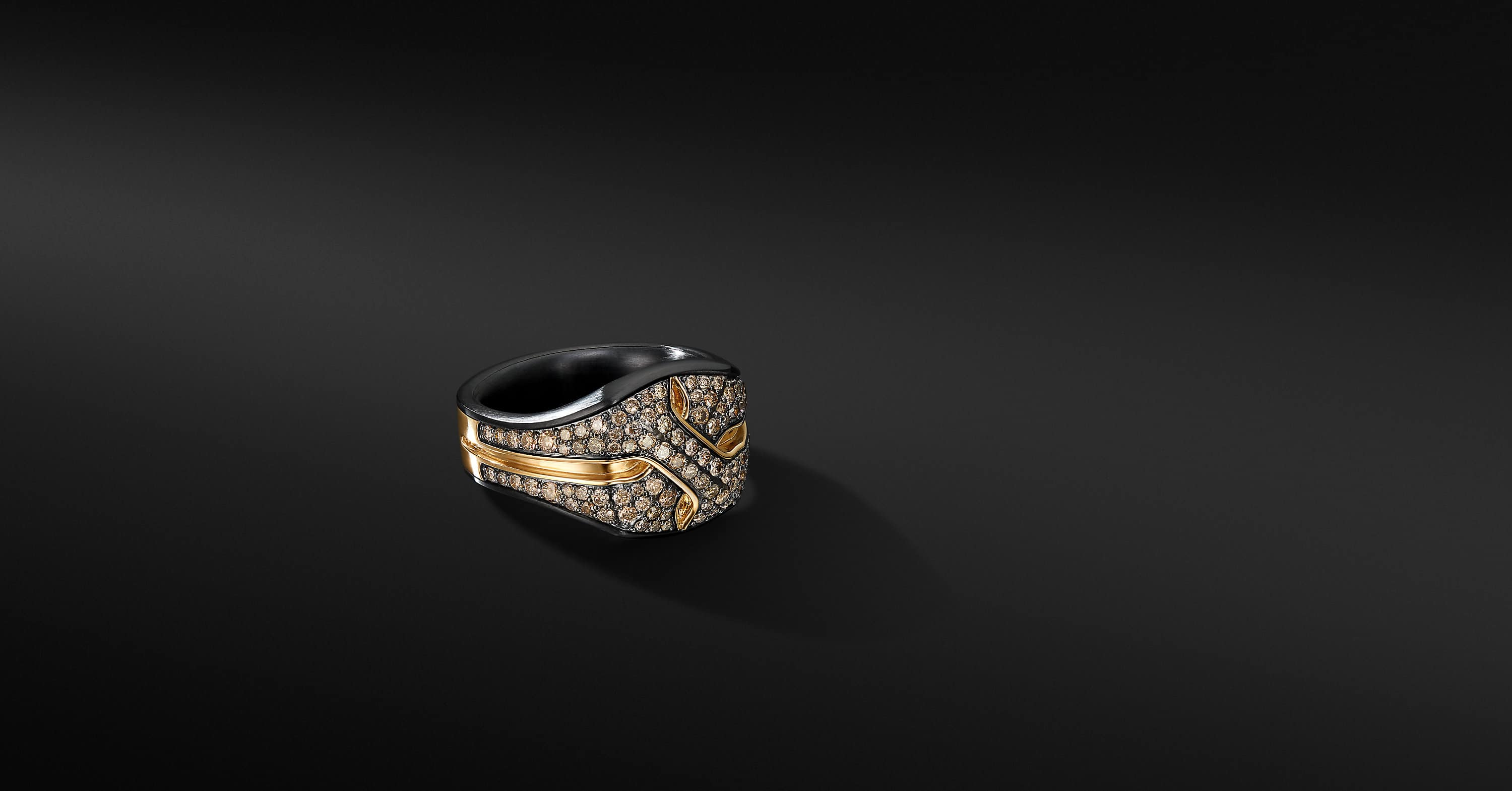Armory Signet Ring in Black Titanium with 18K Yellow Gold