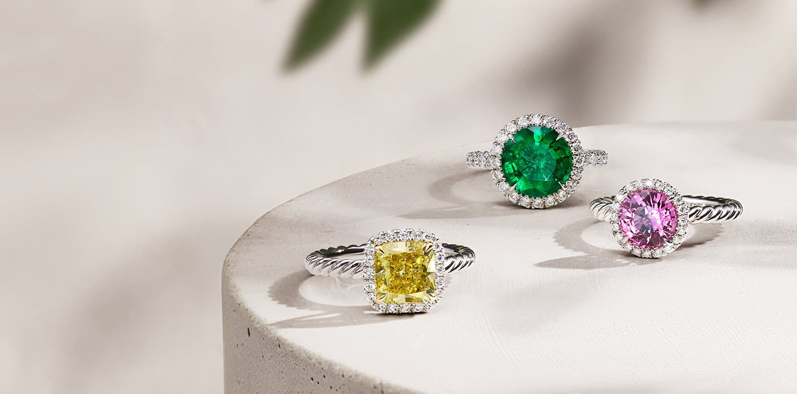 David Yurman DY Capri engagement rings in platinum with white diamonds and a yellow diamond, emerald or pink sapphire center stone, all in a group casting long shadows on a beige stone surface with green leaves in the background.