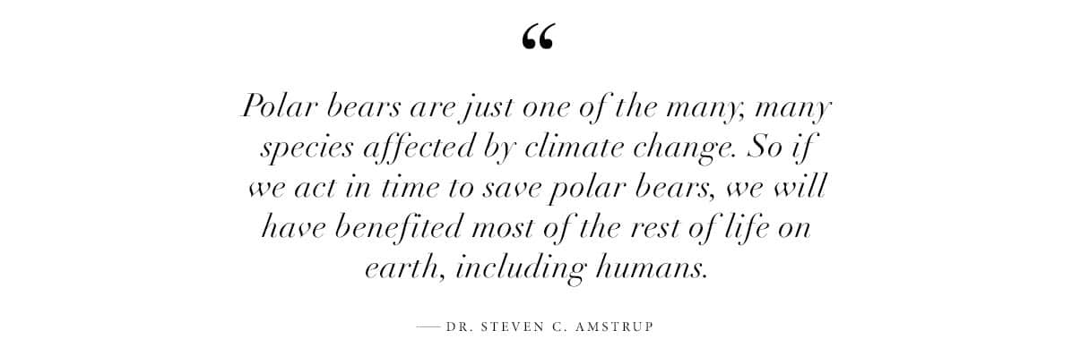 """""""Polar bears are just one of the many, many species affected by climate change. So if we act in time to save polar bears, we will have benefited most of the rest of life on earth, including humans."""" —Dr. Steven C. Amstrup"""